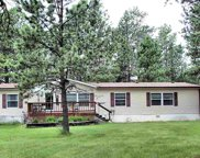 12325 Harris Lane, Custer image