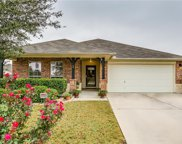 6251 Sika Deer Run, Fort Worth image
