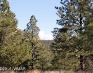 Lot #16 Red Cabin Ranch, Vernon image