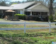 825 Murphrees Valley Rd, Springville image