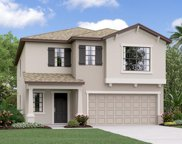 7403 Rosy Periwinkle Court, Tampa image
