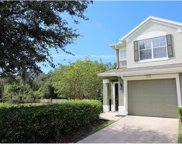 2173 River Turia Circle Unit NA, Riverview image
