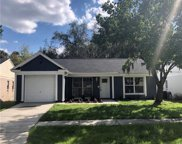 8517 Misty River Court, Tampa image