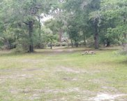 3491 TOMS CT, Green Cove Springs image