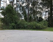 14 Bunker View Place, Palm Coast image