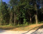 14 Vintage Oaks Way, Simpsonville image