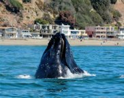 341 Beach Dr, Aptos image