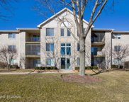 6810 Ridge Point Drive Unit 1A, Oak Forest image