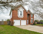 501 Dusty Leather Ct, Pflugerville image