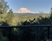16809 249th St E, Orting image