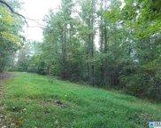 Hillside Dr Unit 7 acres, Blountsville image