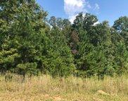 37 A Sharptop Settlement, Blairsville image