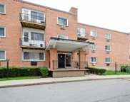 8521 Lotus Avenue Unit 804, Skokie image