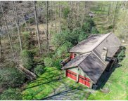 220 Sweetwater Rd, Blue Ridge image