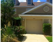 10364 Heron Key Way, Tampa image
