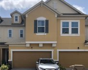 17454 Chateau Pine Way, Clermont image