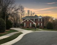 9321  Percy Court, Charlotte image