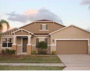 503 First Cape Coral Drive, Winter Garden image
