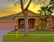 7012 Derwent Glen Circle, Land O' Lakes image