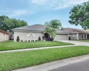 9609 Cypress Brook Road, Tampa image