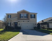 16500 Centipede Street, Clermont image