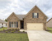 136 Golden Eagle Lane, Anderson image