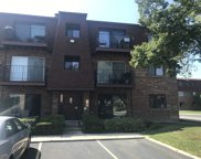 628 Cobblestone Circle Unit B, Glenview image