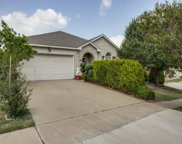 4117 Big Thicket, Fort Worth image