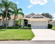 2326 Olive Branch Drive, Sun City Center image