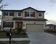11730 Albatross Lane, Riverview image