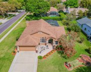 4601 Brayton Terrace S, Palm Harbor image