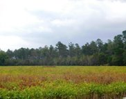 TBD 250 Acres Old Buck Creek Rd, Longs image