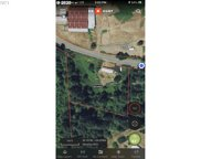 57198 FAT ELK  RD, Coquille image