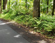 OLD GOVERNMENT RD, PAHOA image
