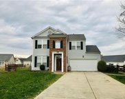 13101  Young Fawn Court, Charlotte image