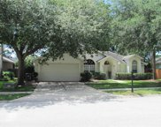 2079 Ancient Oak Drive, Ocoee image