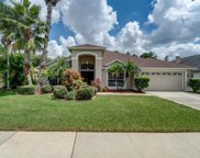 9919 Cypress Shadow Avenue, Tampa image
