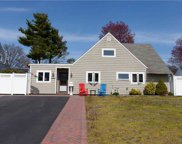 195 Willowood  Drive, Wantagh image