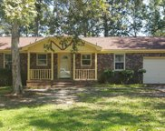 163 Braly Drive, Summerville image