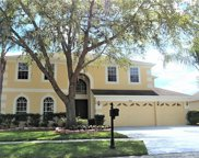 10212 Meadow Crossing Drive, Tampa image