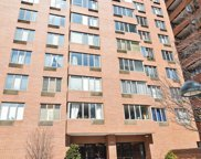 801 South Plymouth Court Unit 1012, Chicago image