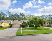 16009 Royal Aberdeen Place, Odessa image
