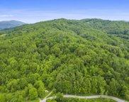 Tbd Buck Mtn Road, Roan Mountain image