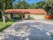 265 Dempsey Road, Palm Harbor image