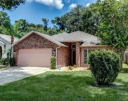 193 Brushcreek Drive, Sanford image