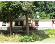 75583 BLUE MOUNTAIN SCHOOL  RD, Cottage Grove image