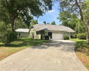 11435 Genter Drive, Spring Hill image