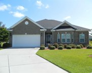 1008 Blue Hole Court, Conway image