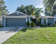 11843 Cedarfield Drive, Riverview image