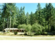 42328 WINNBERRY CREEK  RD, Fall Creek image